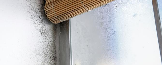Condensatievocht in badkamer voorkomen, behandelen en bestrijden ...